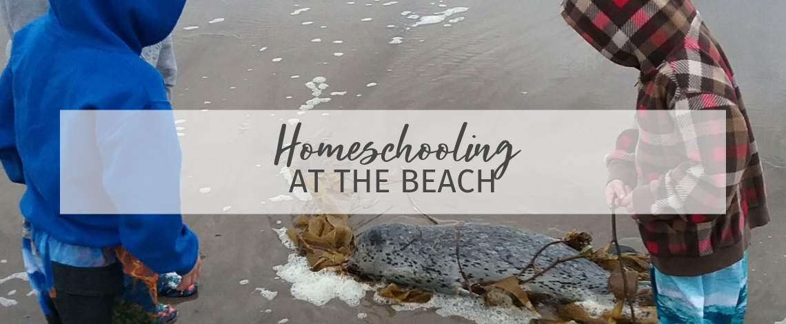 Homeschooling at the Beach