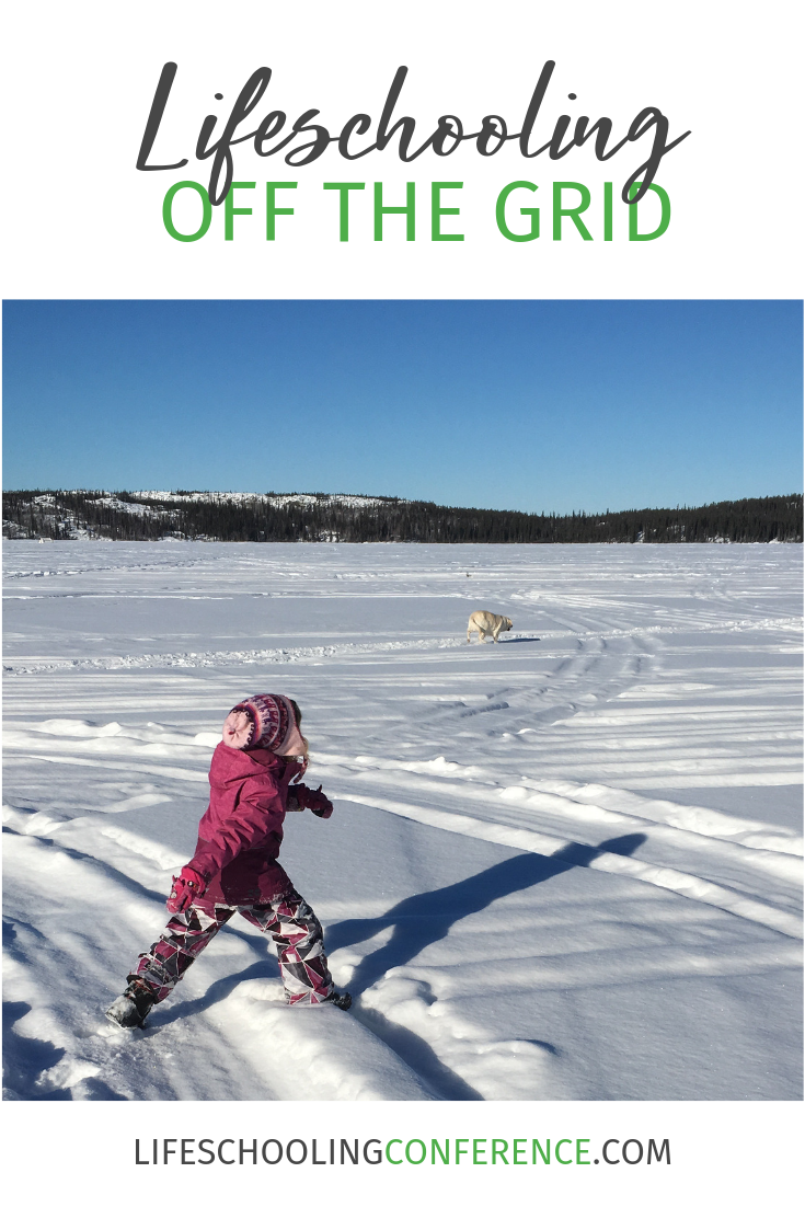When we moved from the Toronto suburbs to an off the grid home in Canada's Northwest Territories in 2012, my husband and I knew we wanted to homestead and homeschool.