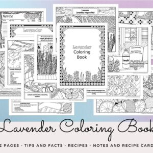 Lavender coloring book