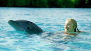 dolphin island mitzy annabel